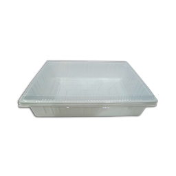 Crema De Fruta Tray, Rectangle [2pcs.]